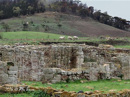 area-archeologica-di-sophiana_alfio-barca